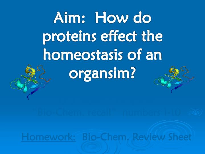 Aim:  How do proteins effect the homeostasis of an