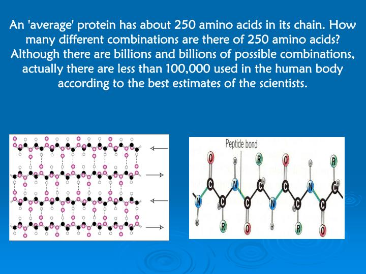 An 'average' protein has about 250 amino acids in its chain. How many different combinations are there of 250 amino acids? Although there are billions and billions of possible combinations, actually there are less than 100,000 used in the human body according to the best estimates of the scientists.