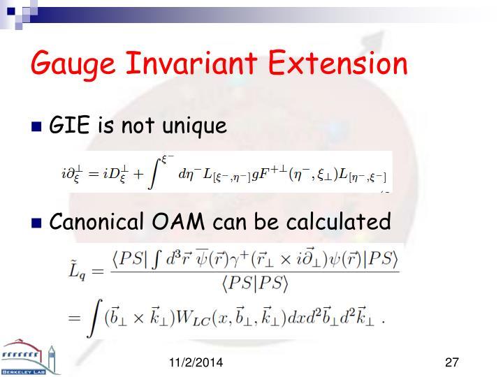 Gauge Invariant Extension