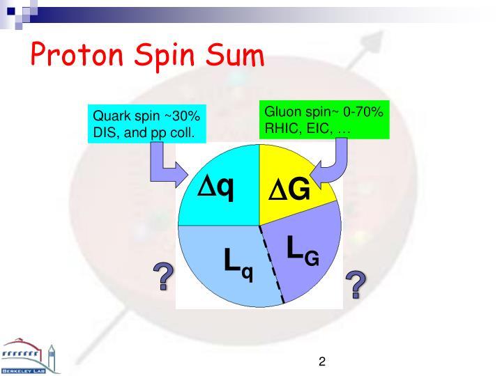 Proton spin sum