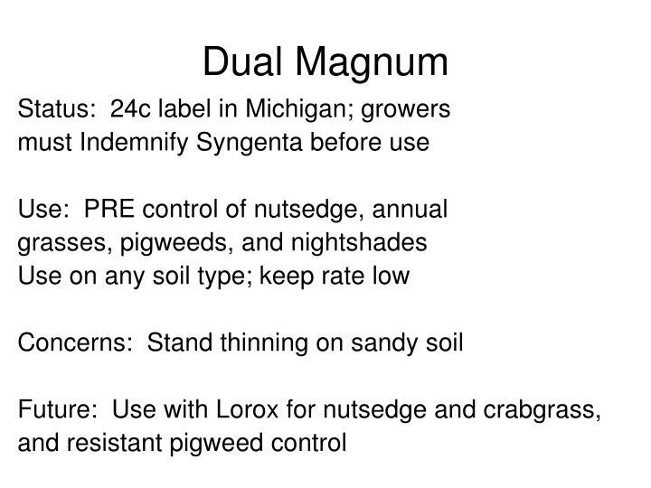 Dual Magnum