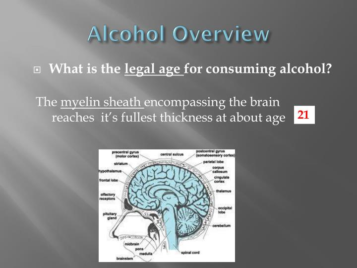 alcohol overview n.