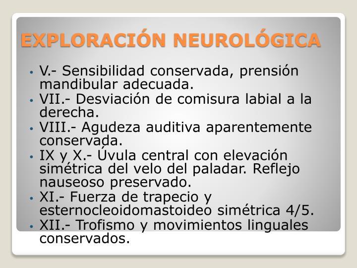 V.- Sensibilidad conservada, prensión mandibular adecuada.