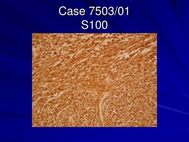 Case 7503/01