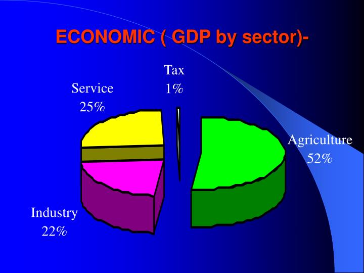 ECONOMIC ( GDP by sector)-