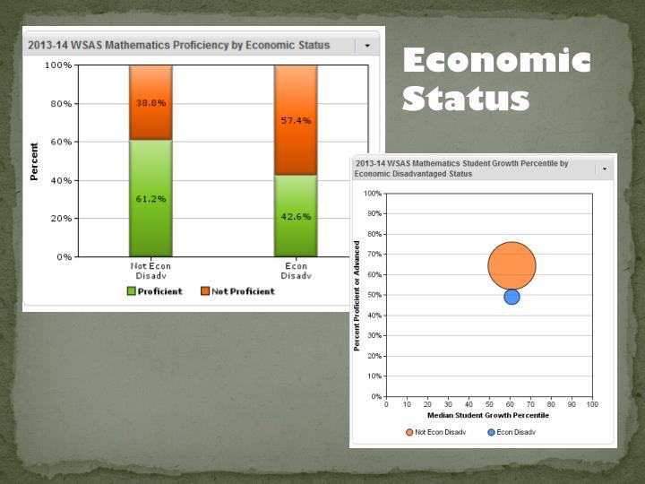 Economic Status