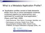 what is a metadata application profile