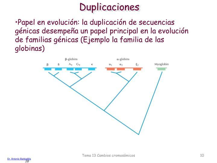 Duplicaciones