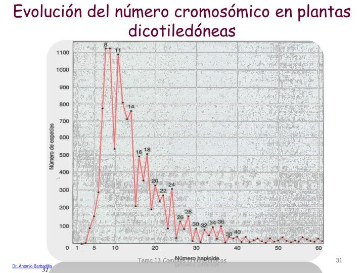 Evolución del número cromosómico en plantas dicotiledóneas