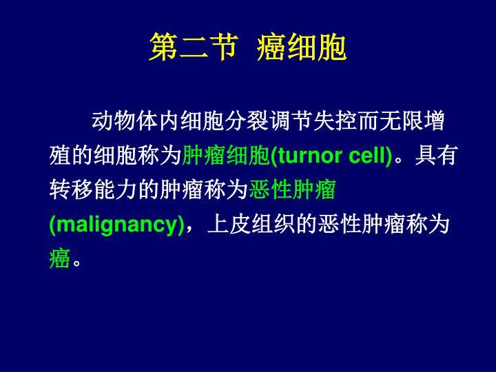 第二节  癌细胞