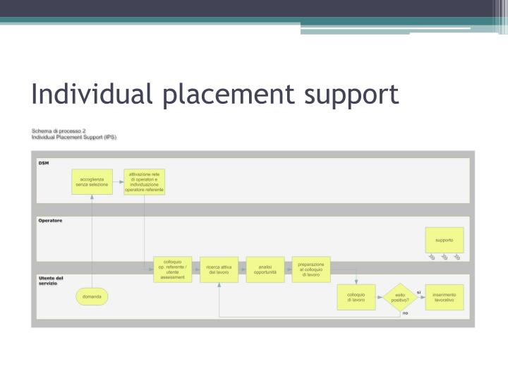 Individual placement support