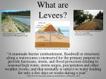 what are levees
