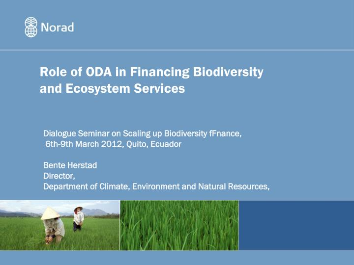 role of oda in financing biodiversity and ecosystem services n.