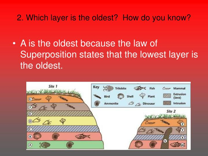 2. Which layer is the oldest?  How do you know?