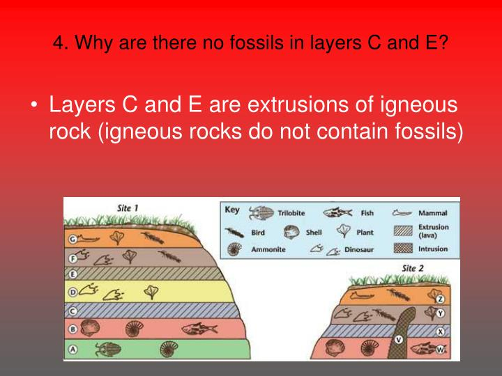 4. Why are there no fossils in layers C and E?