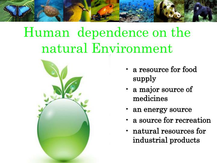Human  dependence on the natural Environment