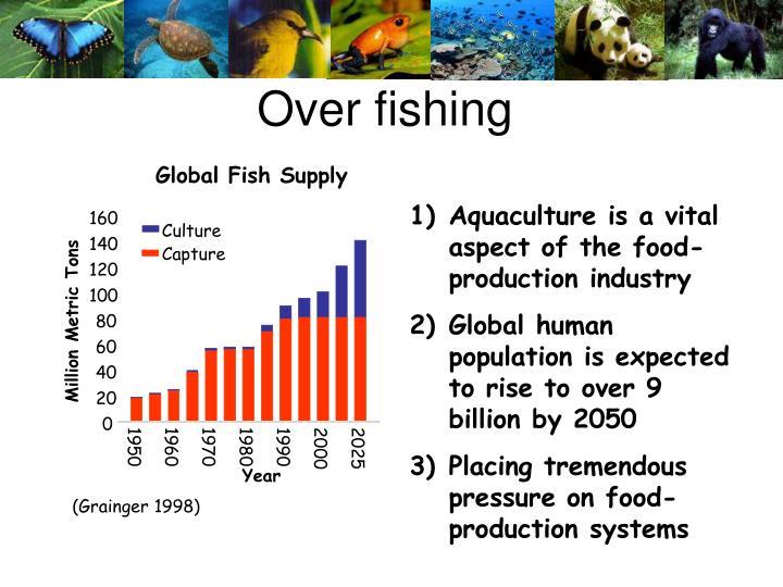 Global Fish Supply