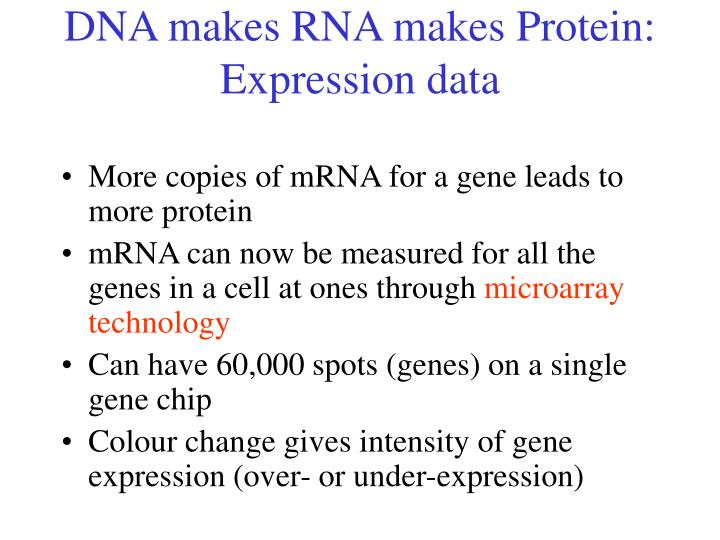 DNA makes RNA makes Protein: