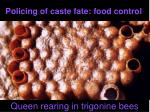 policing of caste fate food control1