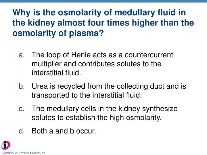 Why is the osmolarity of medullary fluid in the kidney almost four times higher than the osmolarity of plasma?