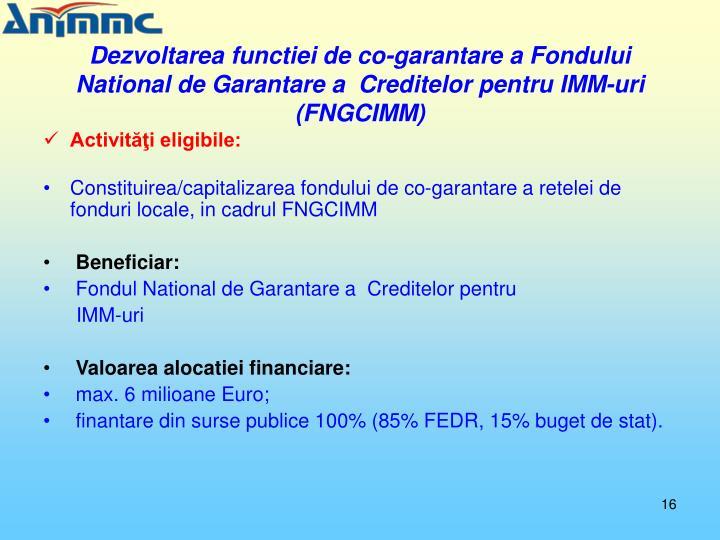 Dezvoltarea functiei de co-garantare a Fondului National de Garantare a  Creditelor pentru IMM-uri (FNGCIMM)