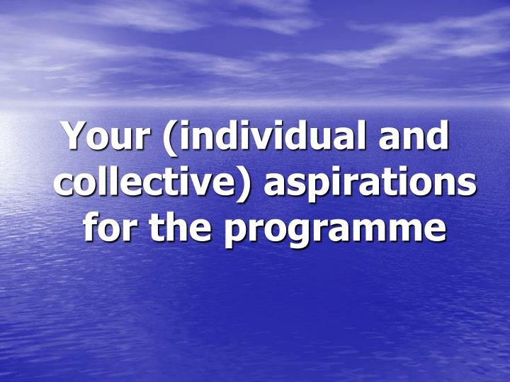 Your (individual and collective) aspirations for the programme