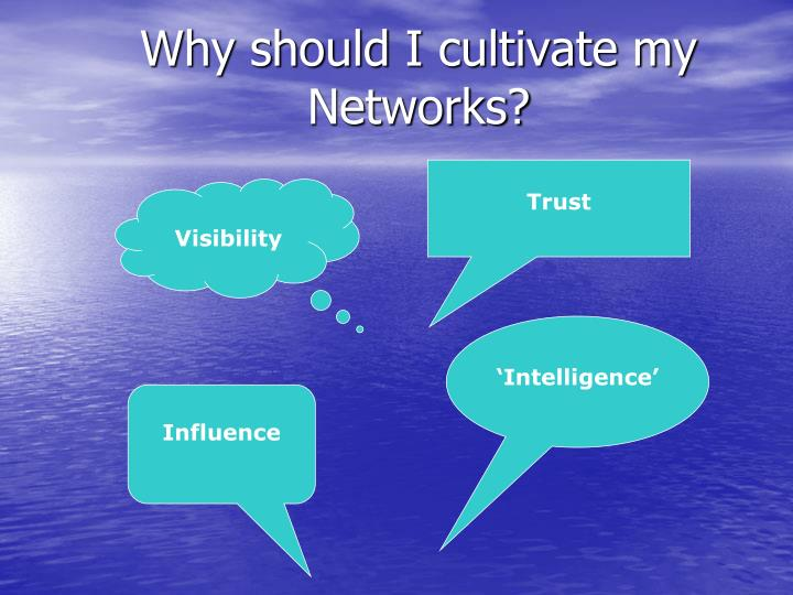 Why should I cultivate my Networks?