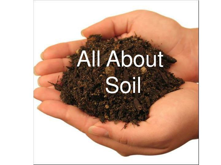 all about soil n.