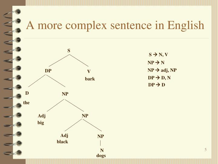 A more complex sentence in English
