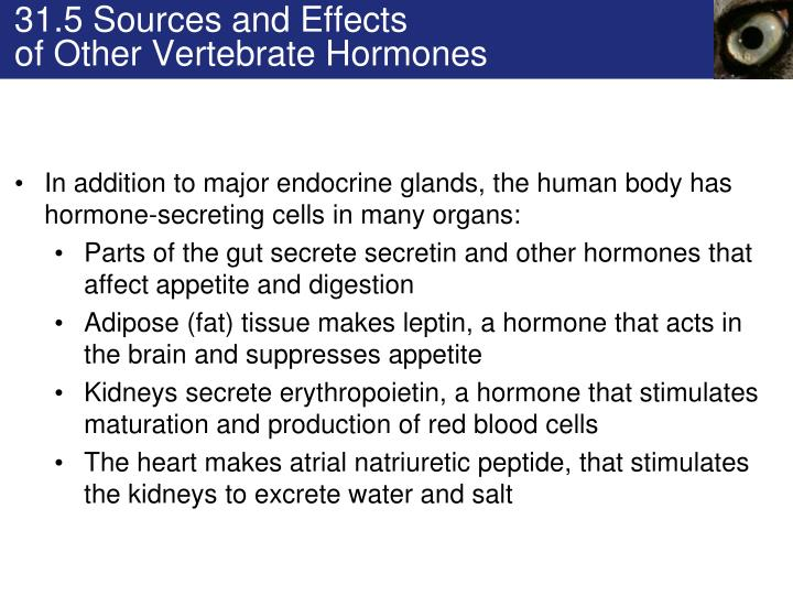 31.5 Sources and Effects