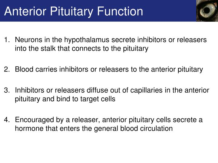 Anterior Pituitary Function