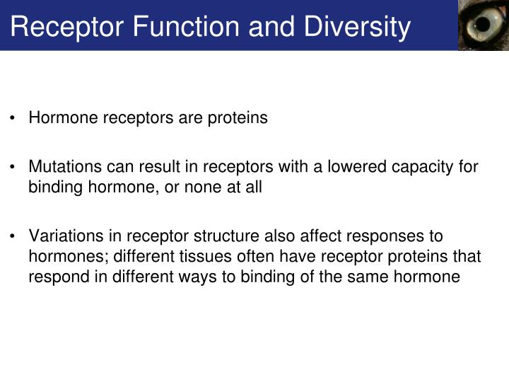 Receptor Function and Diversity