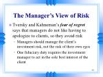 the manager s view of risk