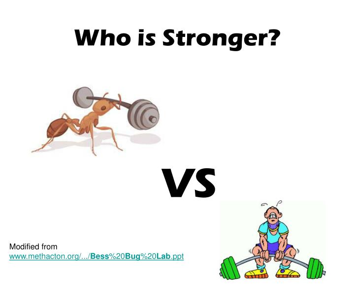 who is stronger n.