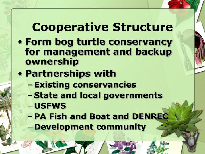 Cooperative Structure