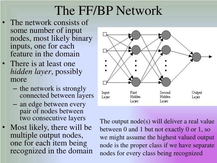 The FF/BP Network