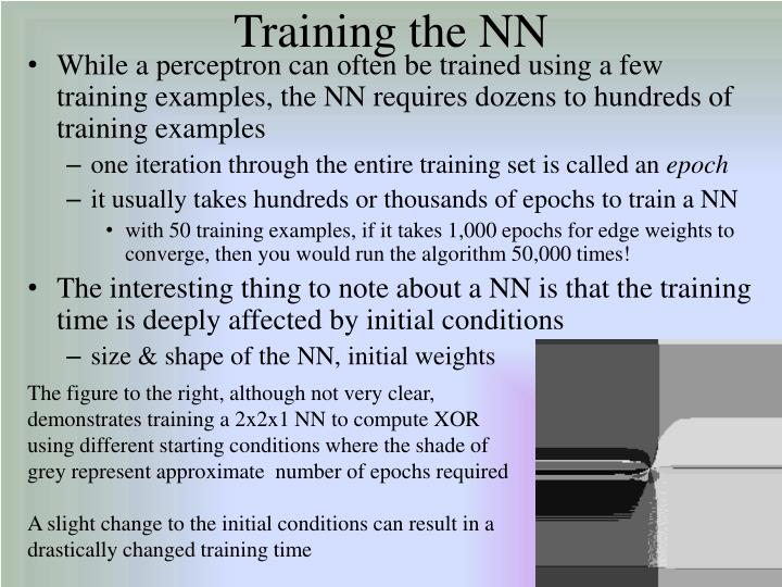 Training the NN