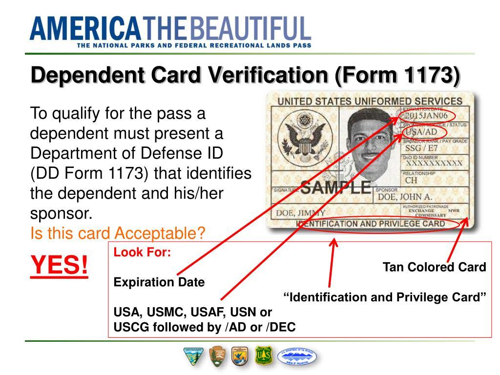 Dd Form 1173
