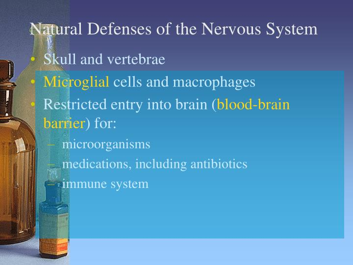 Natural defenses of the nervous system