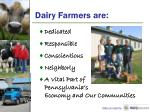 dairy farmers are