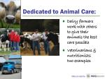 dedicated to animal care1