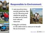 responsible to environment1