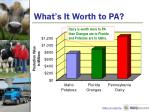 what s it worth to pa1