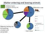 matter entering and leaving animals