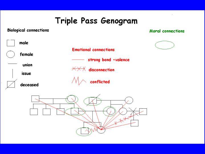 Triple Pass Genogram