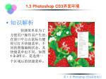 1 3 photoshop cs33