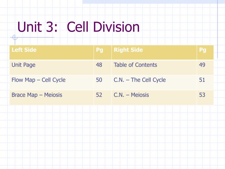 unit 3 cell division n.