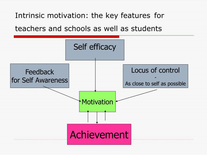 Intrinsic motivation: the key features