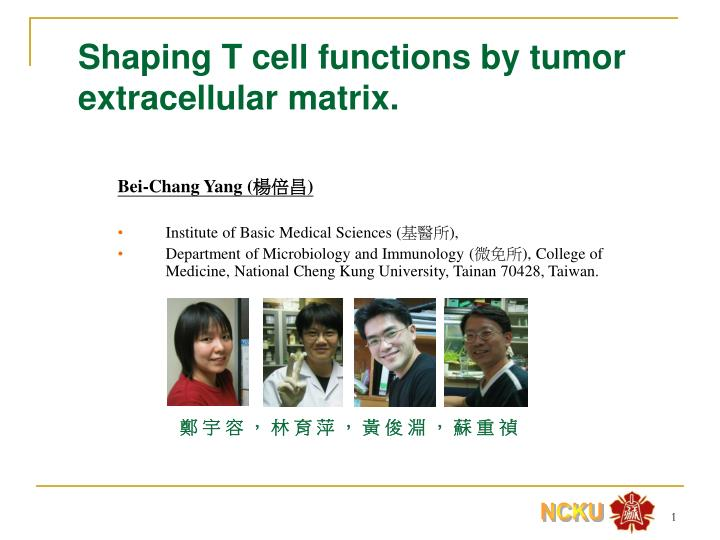 shaping t cell functions by tumor extracellular matrix n.