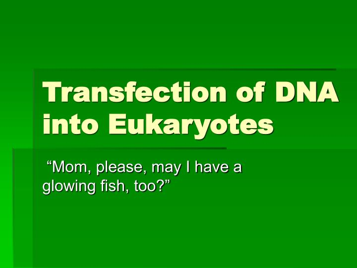 transfection of dna into eukaryotes n.